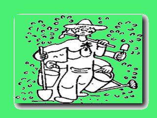 год садовода чапек