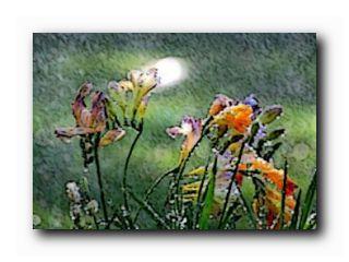благодатный дождь