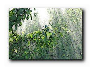 майский дождь картинки