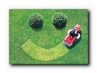 пора косить газон