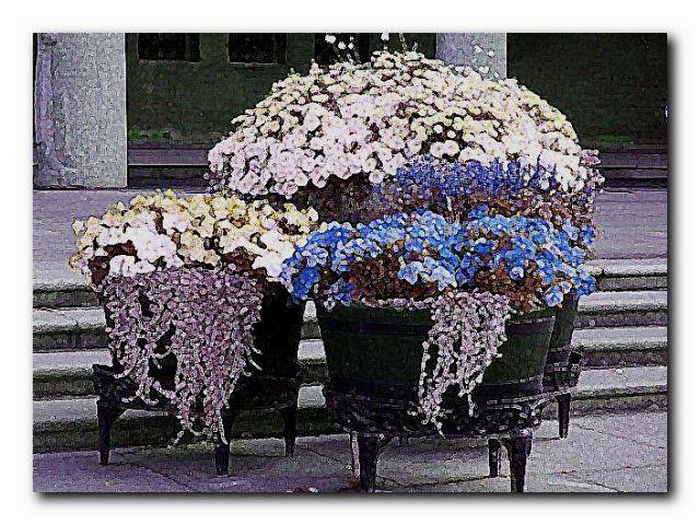 год садовода чапек ботаническая глава