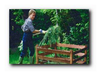 жизнь садовода август