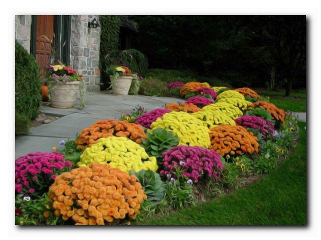 сентябрь садовода чапек