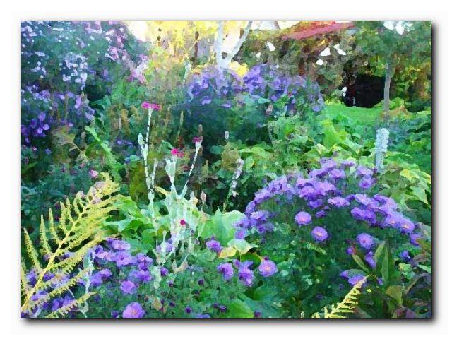 чапек год садовода октябрь