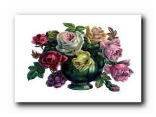 значение цветов в букете