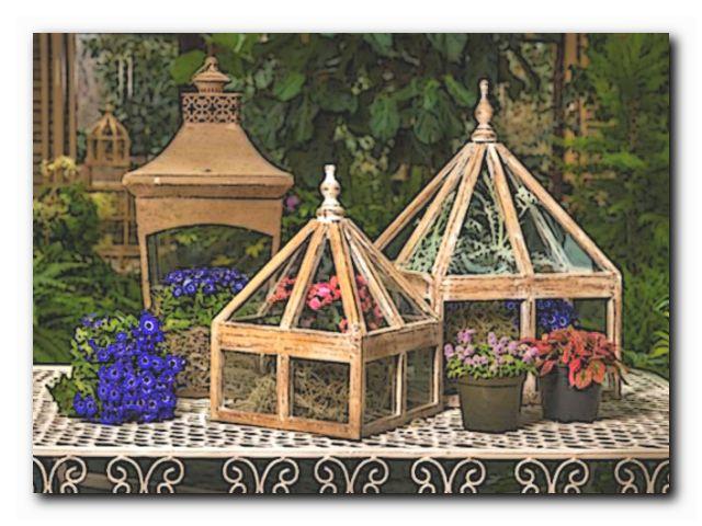 викторианские домашние сады