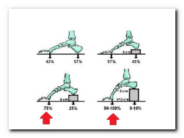 как правильно выбрать каблук