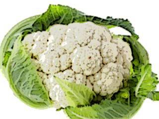 блюда из цветной капусты пудинг