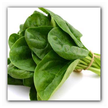 полезный шпинат