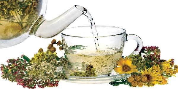 рецепт травяного чая