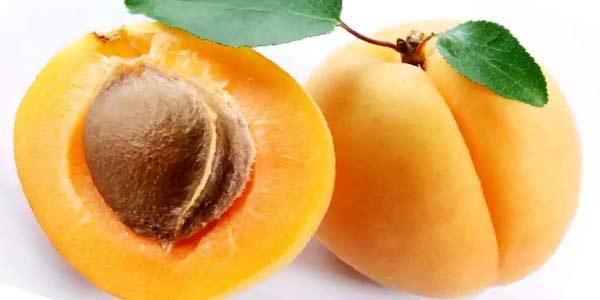 польза фруктовых косточек